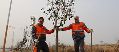 Planting Tree Day